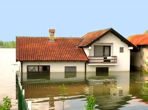 Flood Insurance Agent Loganville, GA